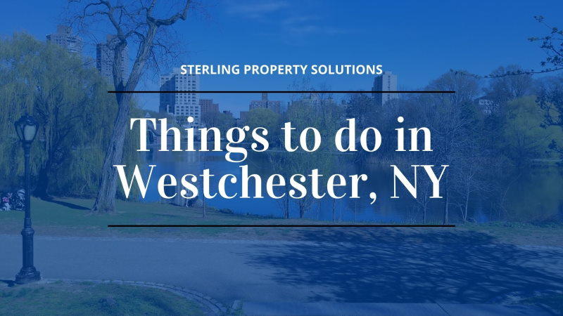 things to do in westchester ny